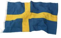Bild på ADELA Flagga Svensk 240cm